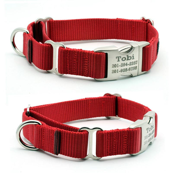 personalized buckle martingale webbing dog collar with