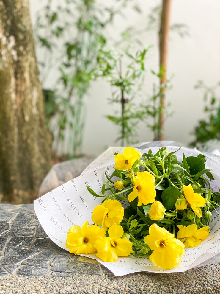 RANUNCULUS BUTTERFLY NETHERLANDS - PHYTALOS YELLOW - LA ATELIER SINGAPORE