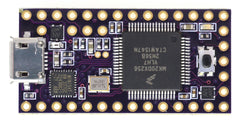 Teensy 3.2 - Purple OSH Park Edition