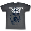 Andre the Giant Whole World In His Hands WWE Mens Gray T-shirt