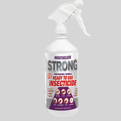 Insectaclear Strong Insect Spray for bed bugs