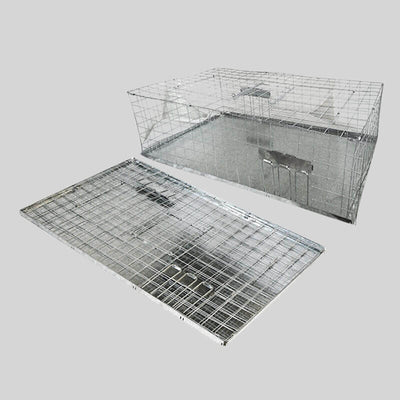 Folding trap for pigeons