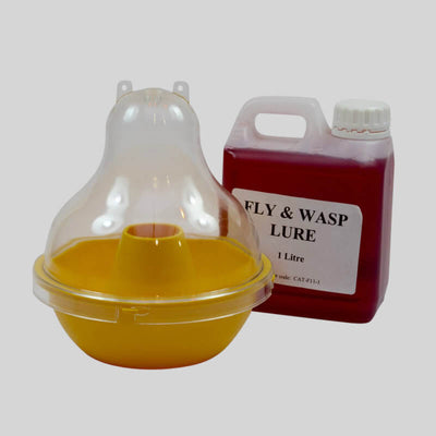 Wasp and Fly Dome Trap