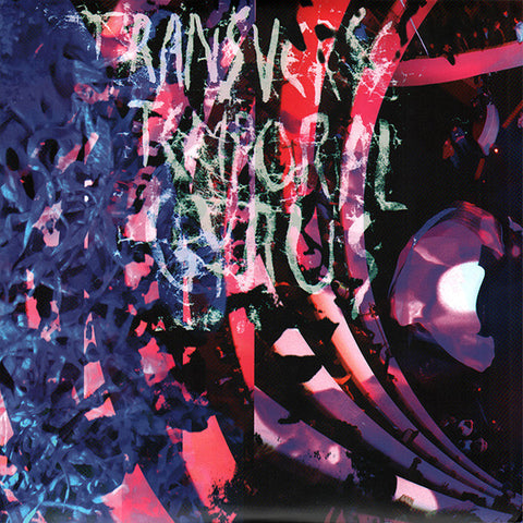 Animal Collective<br><em>Transverse Temporal Gyrus</em><br>(Domino, 2012)