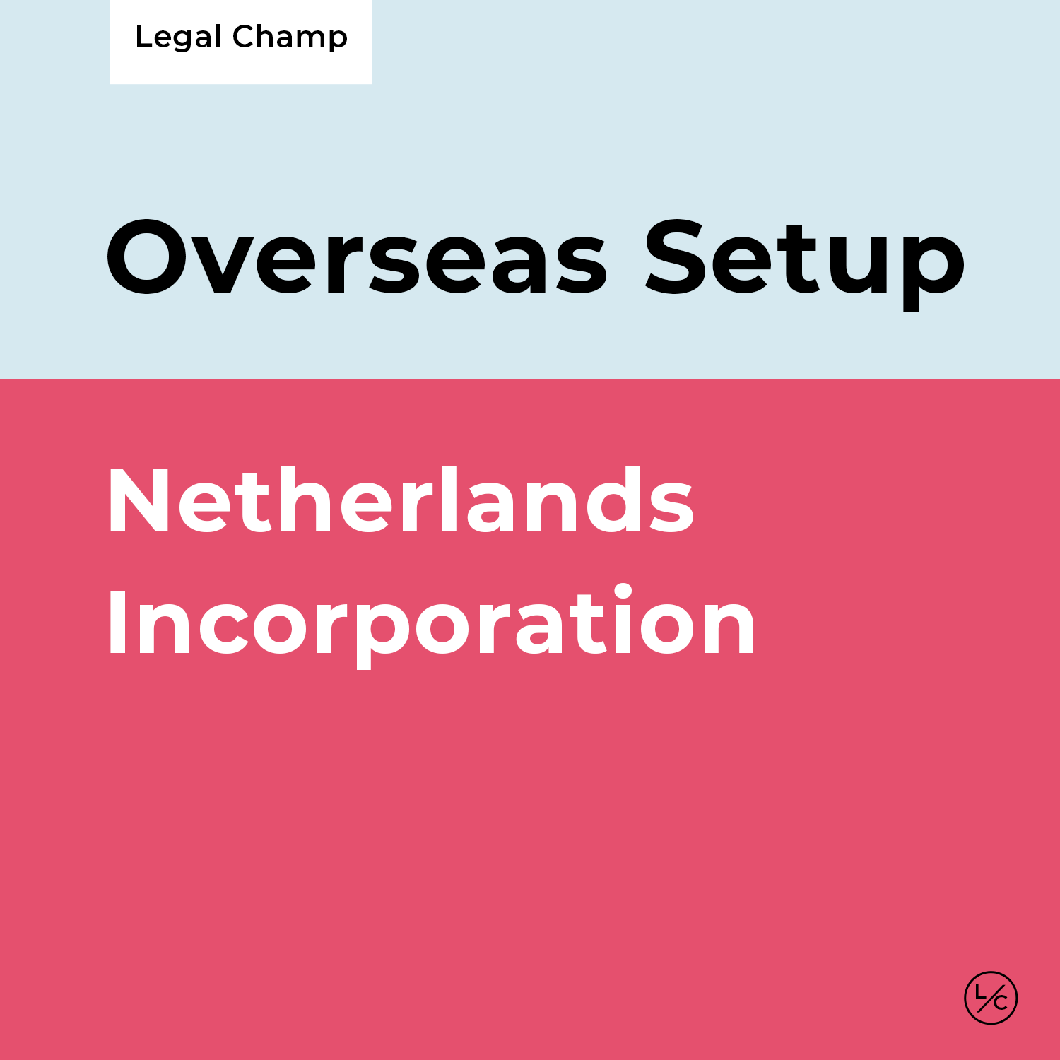 Netherlands Incorporation