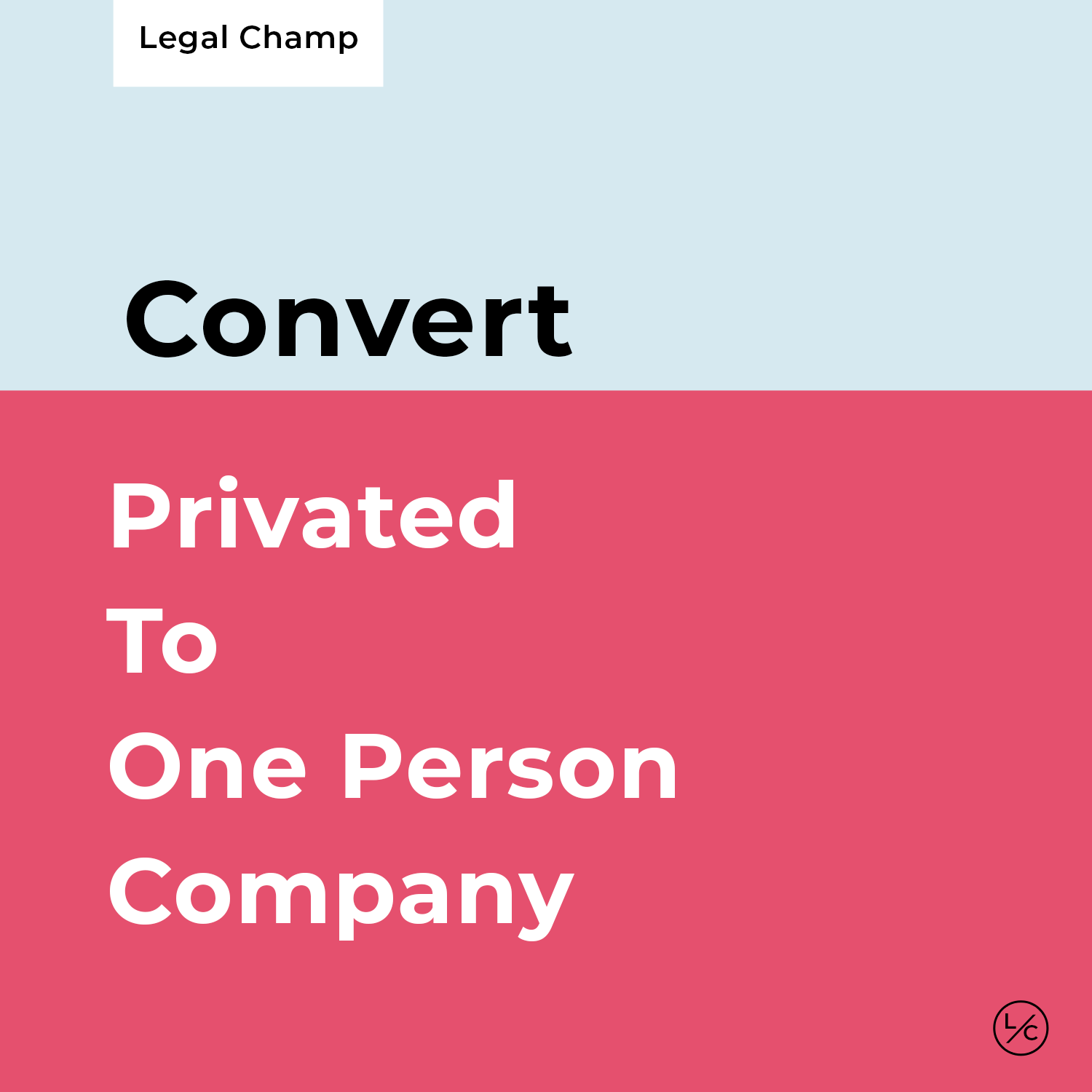 Private To One Person Company