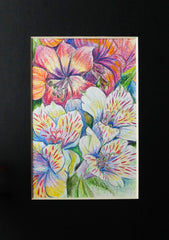 Original drawing of Inca Lily Flowers, Watercolor Pencils ACEO
