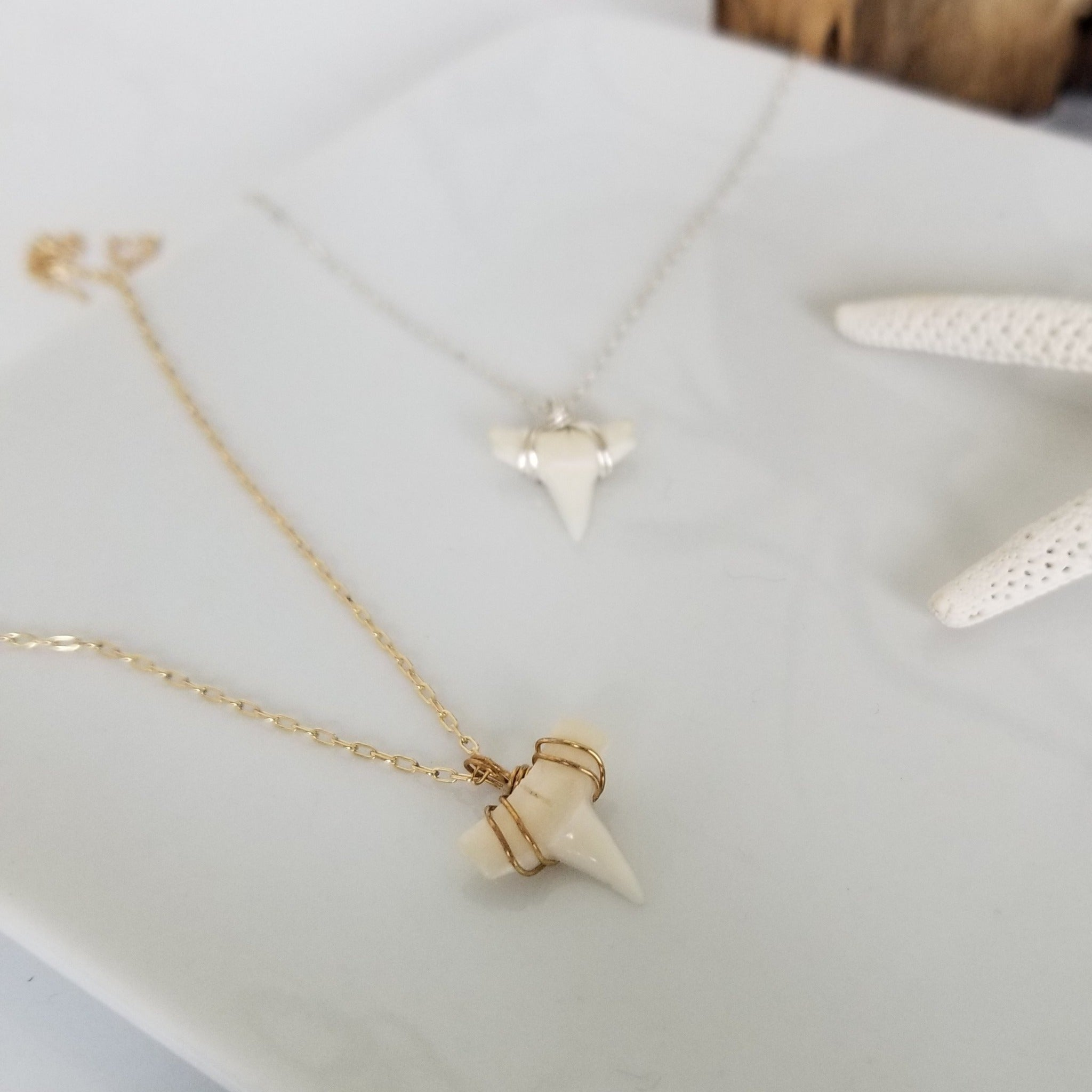 "The ""Annesa"" - Real Shark Tooth Layering Necklace - Sterling or Gold"
