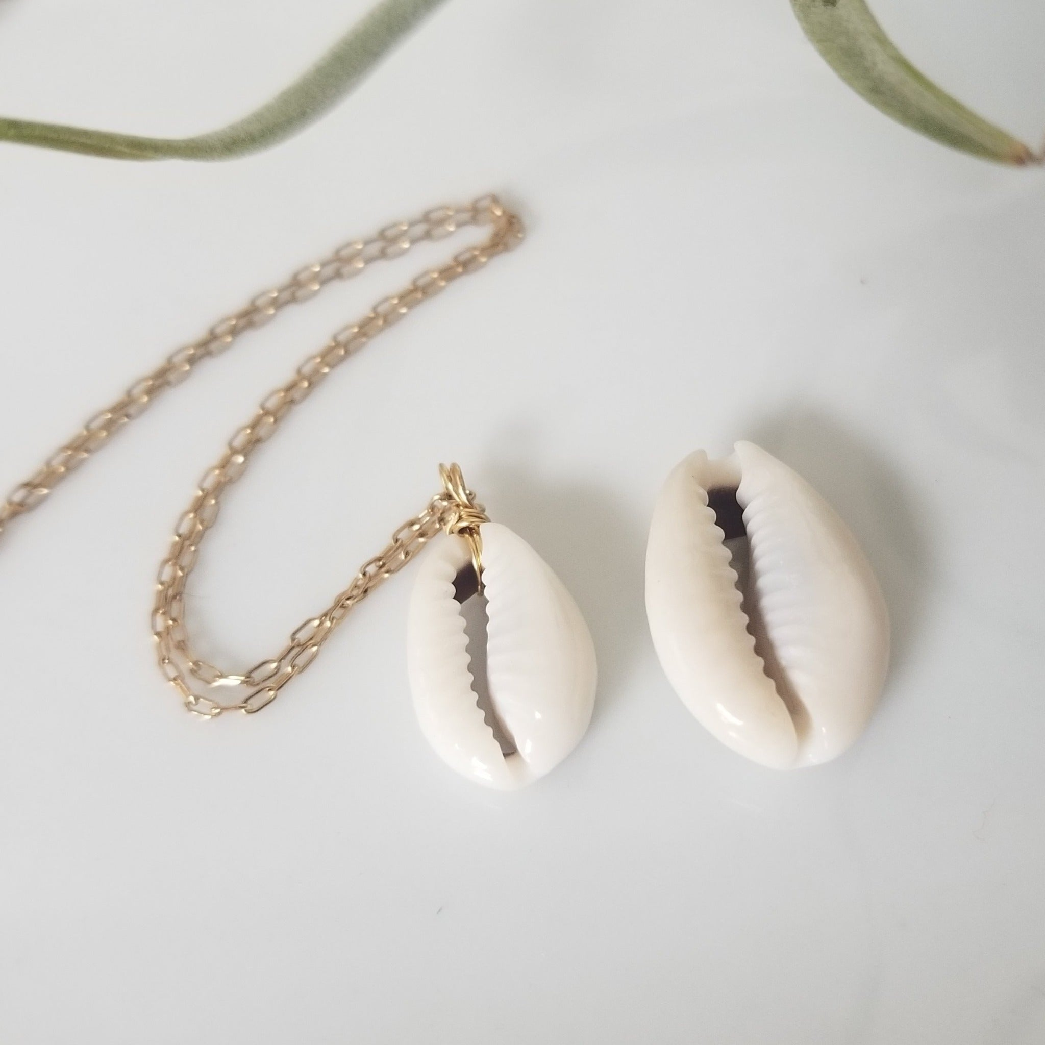 Natural Cowrie Shell Necklace - Small, Med, or Large Shell - Sterling or Gold