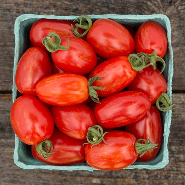 Supernova Grape Tomato Seeds