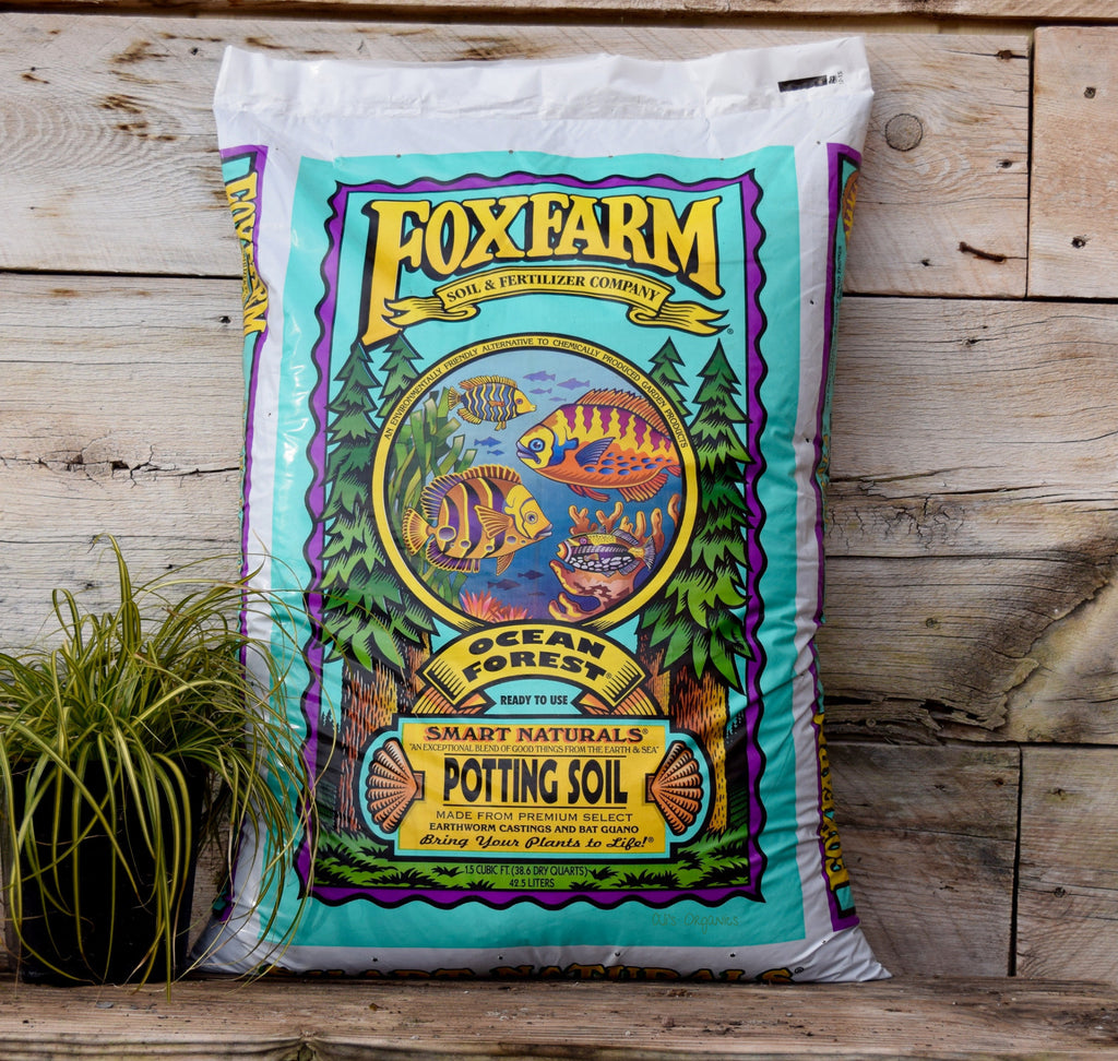 Ocean Forest All Natural Potting Soil