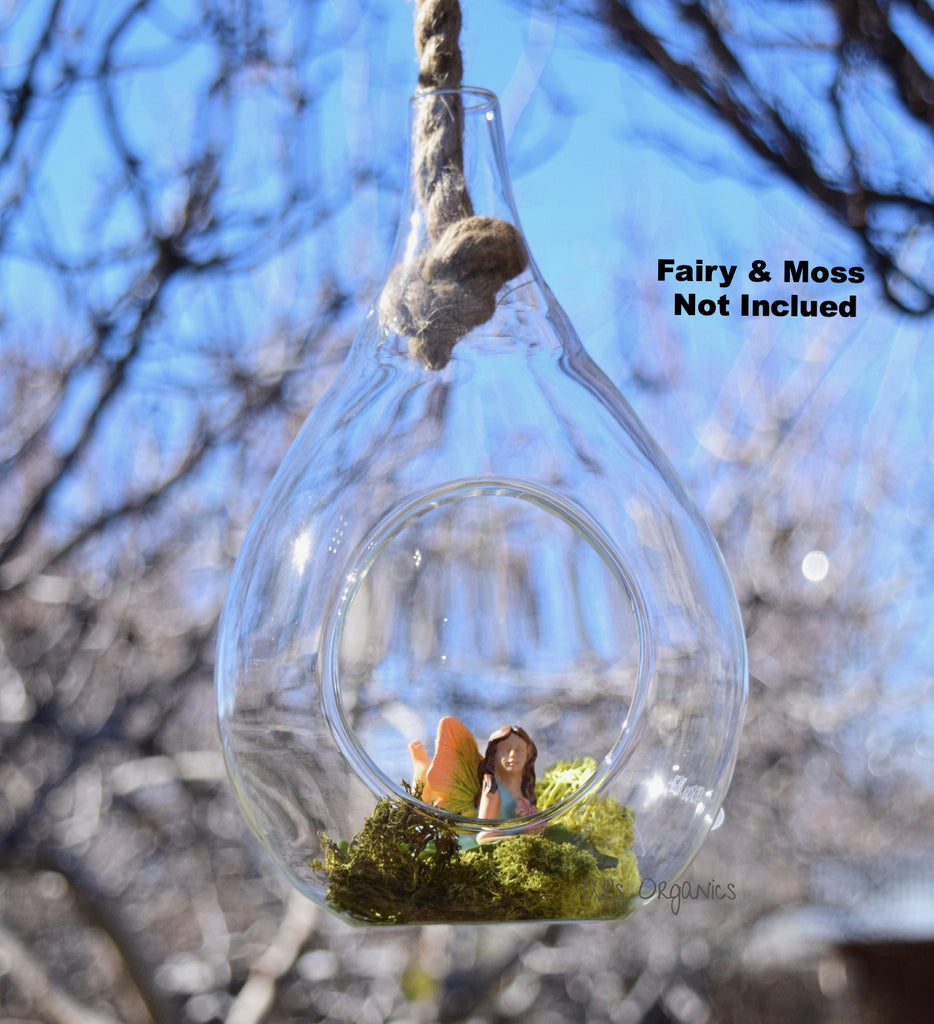 Glass Hanging Terrarium Vase