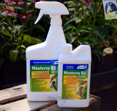 Biological Insecticide Bt