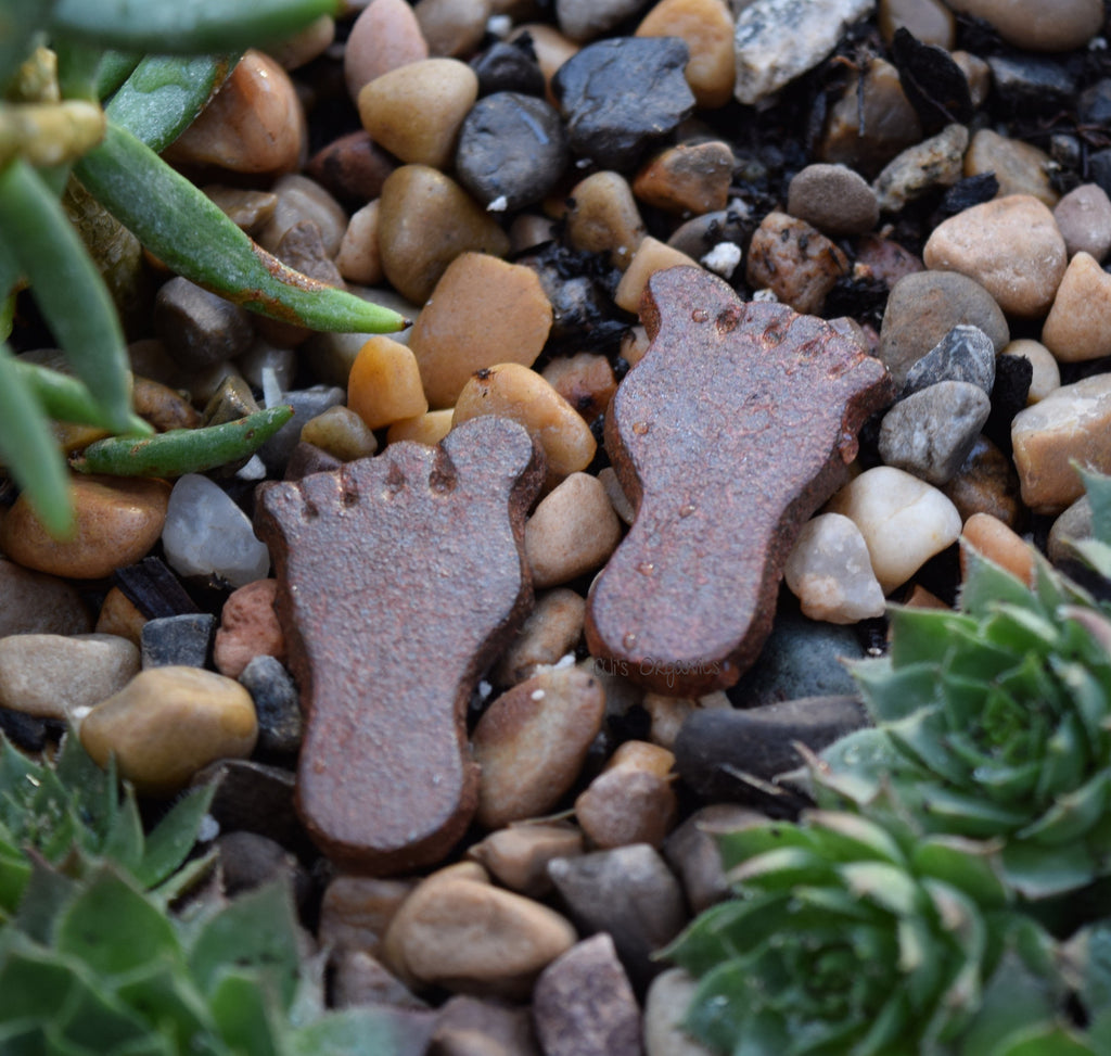 Miniature Feet Stepping Stones