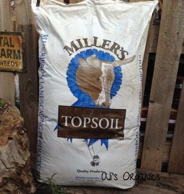 Top Soil Blend 1 Cu Ft Bag