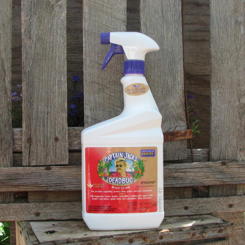 Captain Jacks Dead Bug Brew Spray