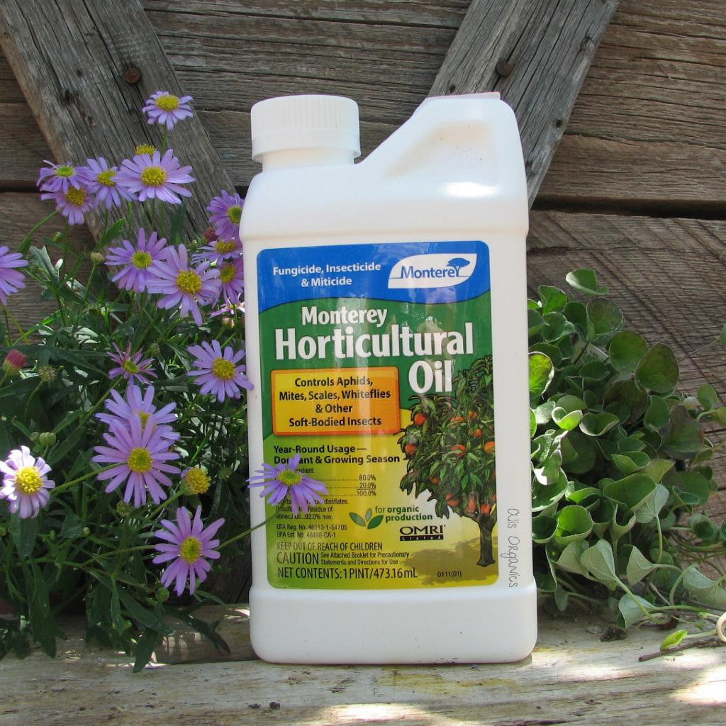Horticultural & Dormant Oil