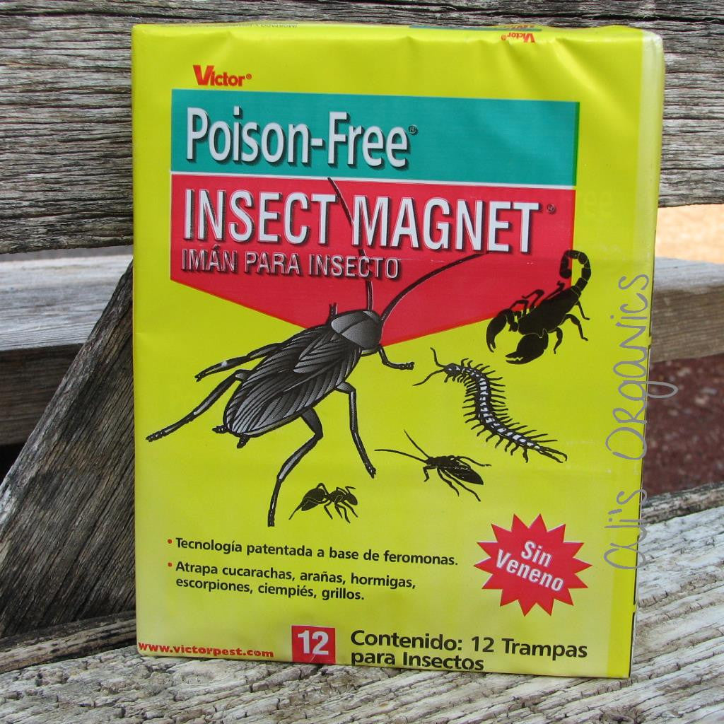 Poison-Free Insect Magnet