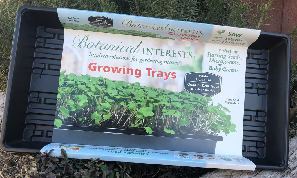 Growing Trays