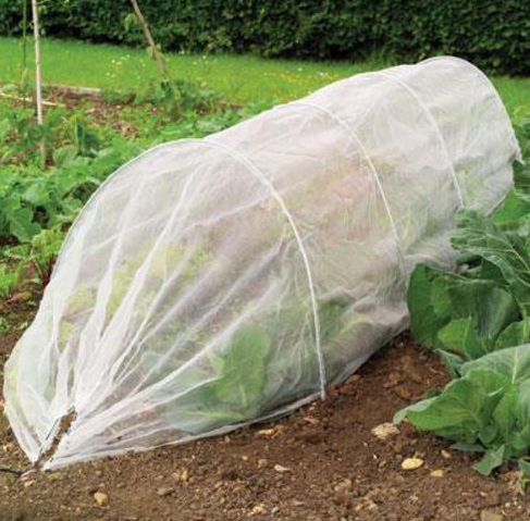 Giant Grow Tunnel Cloche