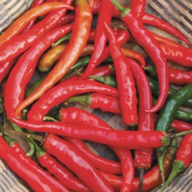 Ring-O-Fire Cayenne Hot Pepper