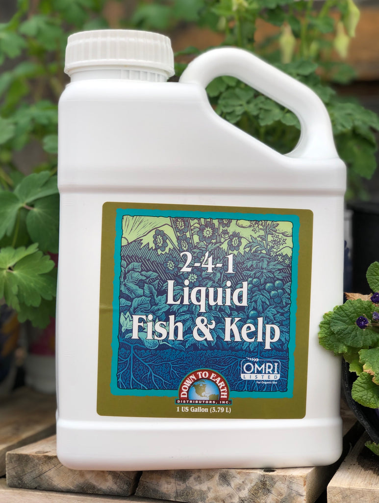 Fish & Kelp Organic Liquid Fertilizer
