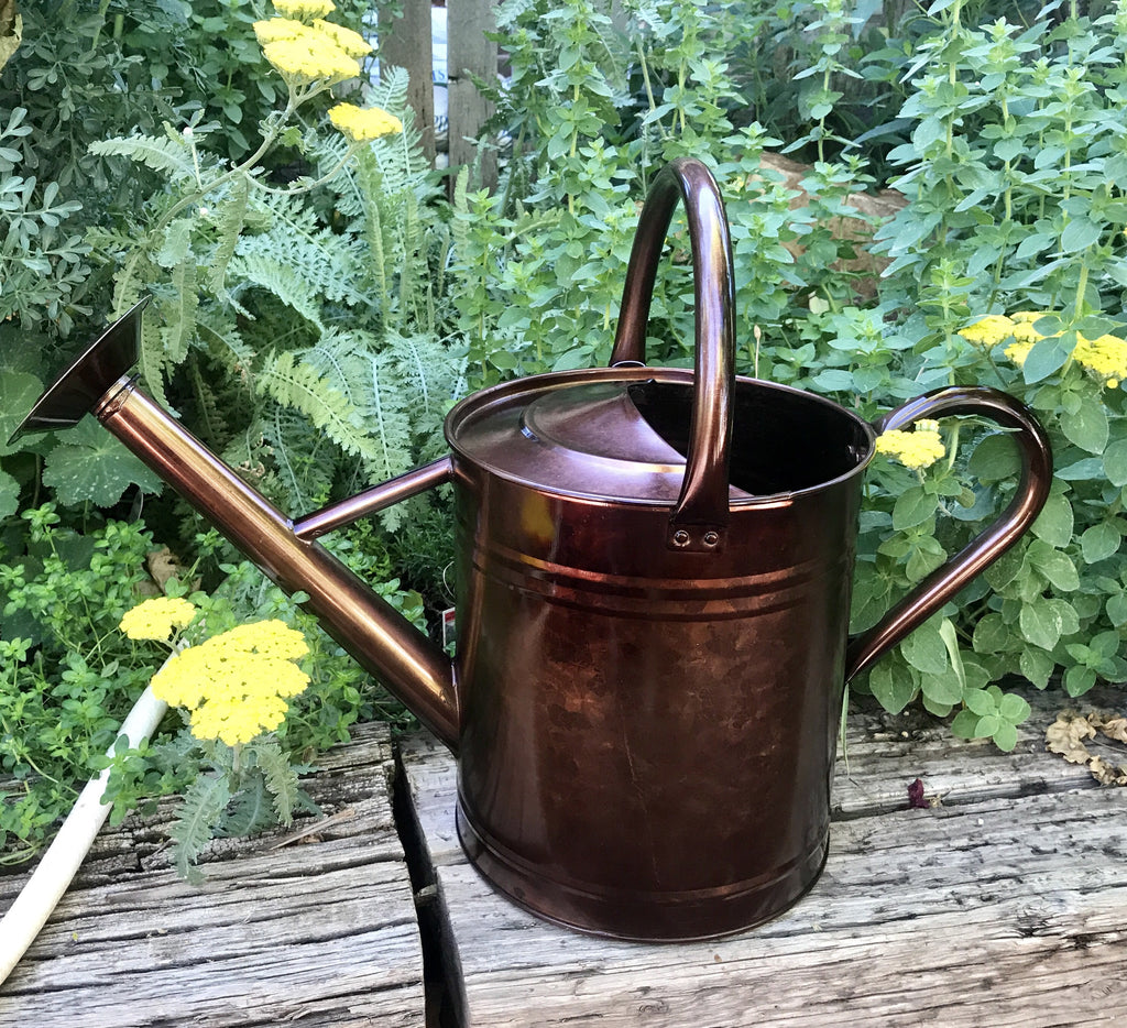 2 gallon watering can - Garden Watering Can
