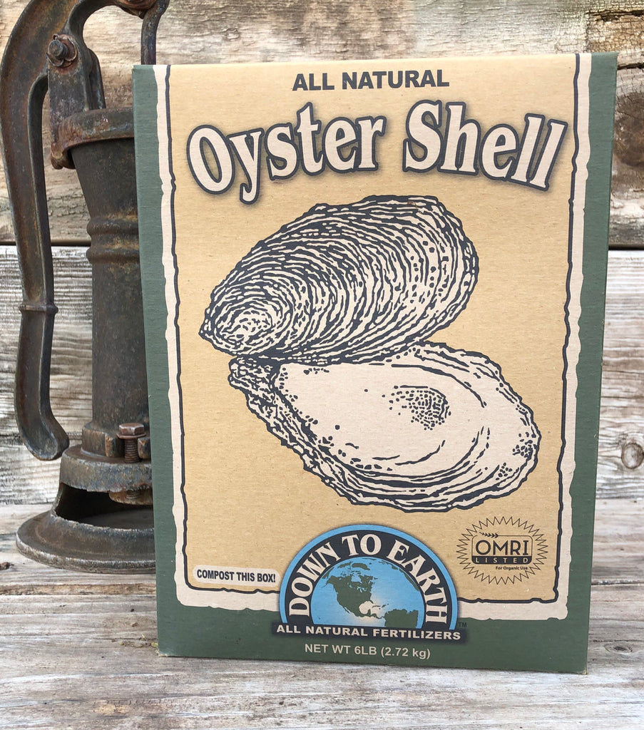 Oyster Shell (Ground)
