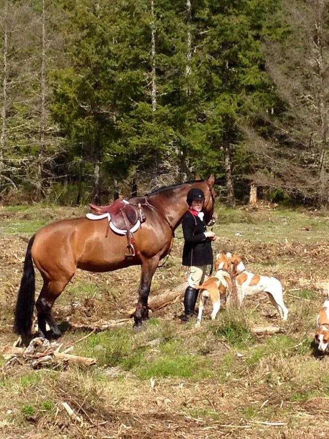 WOODBROOK HUNT CLUB | End of Season Hunts