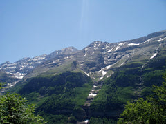 Looking up in the Pyrenees