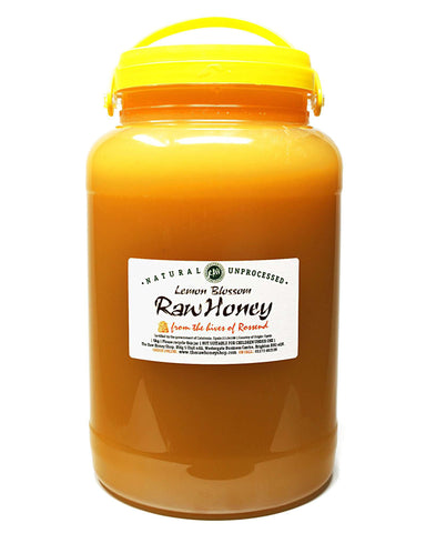Pure and Natural Raw Lemon Blossom Honey - 5kg - The Raw Honey Shop