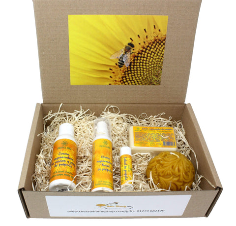 Pure and Natural Health and Well Being Skincare Gift Set - Face Cream, Hand & Foot Cream, Lip Balm, Propolis Soap and Beeswax Candle - The Raw Honey Shop