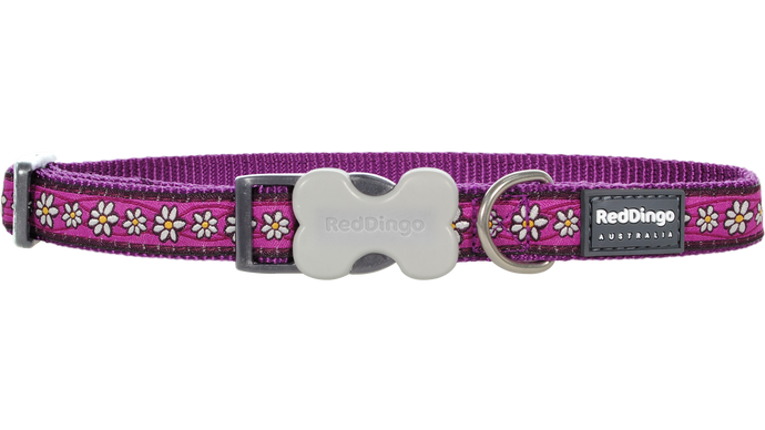 Daisy Chain Purple