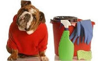 Picture Courtesy ASPCA - Poisonous Products and Dogs