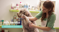Banner Image of a Dog Groomer and Labradoodle that wants to send personalized pet sympathy packages to their customers