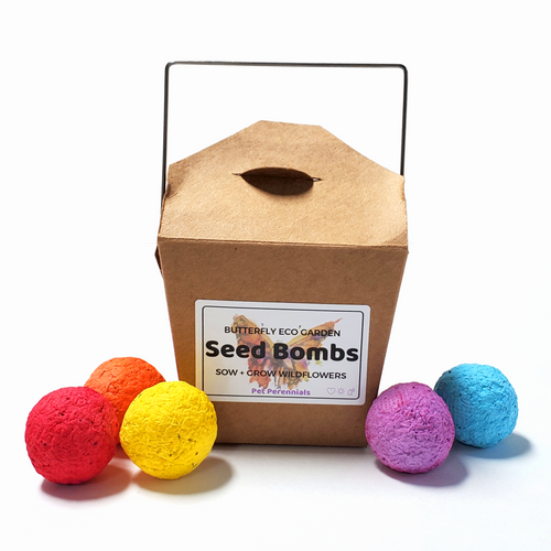 Butterfly Eco Garden Seed Bombs - Pet Perennials