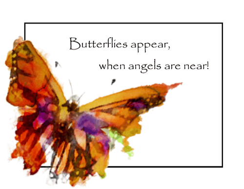 Butterfly Blessings Sympathy Card - Set of 6
