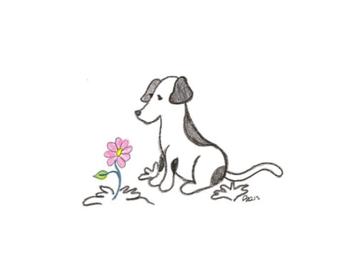 Animal Sketches Sympathy Cards - Set of 6 - Pet Perennials