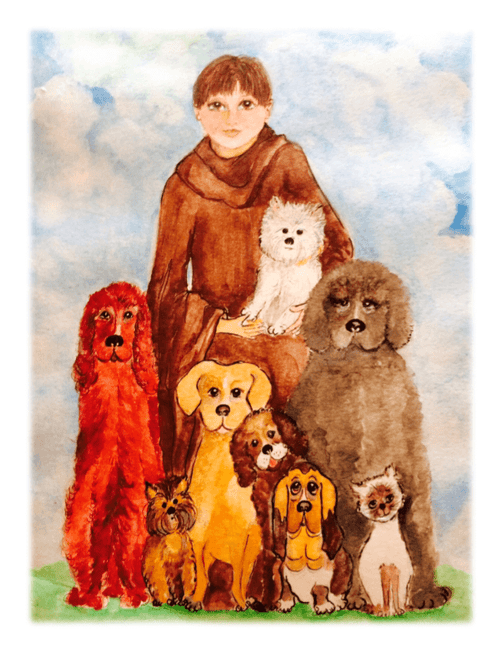 St. Francis Watercolor Cards - Set of 6 - Pet Perennials