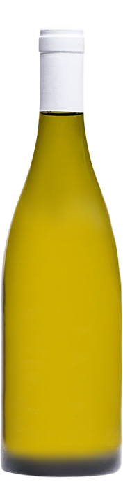 2019 Bodega Chacra / Jean-Marc Roulot Chardonnay Chacra
