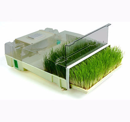 EasyGreen MikroFarm Wheatgrass Grower & Sprouter (Single)