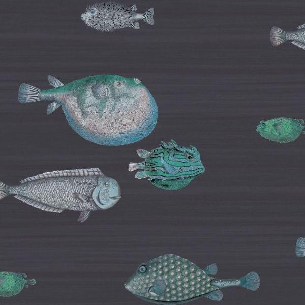 Cole and Son Wallpaper 1 x Ink Acquario 114/16032  Wallpaper Roll Cole and Son Fornasetti Acquario Wallpaper 5 Colours