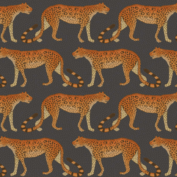 Cole and Son Wallpaper 1 x Roll Leopard Walk Wallpaper 109/2008 Cole and Son Ardmore Leopard Wallpaper 5 Colours