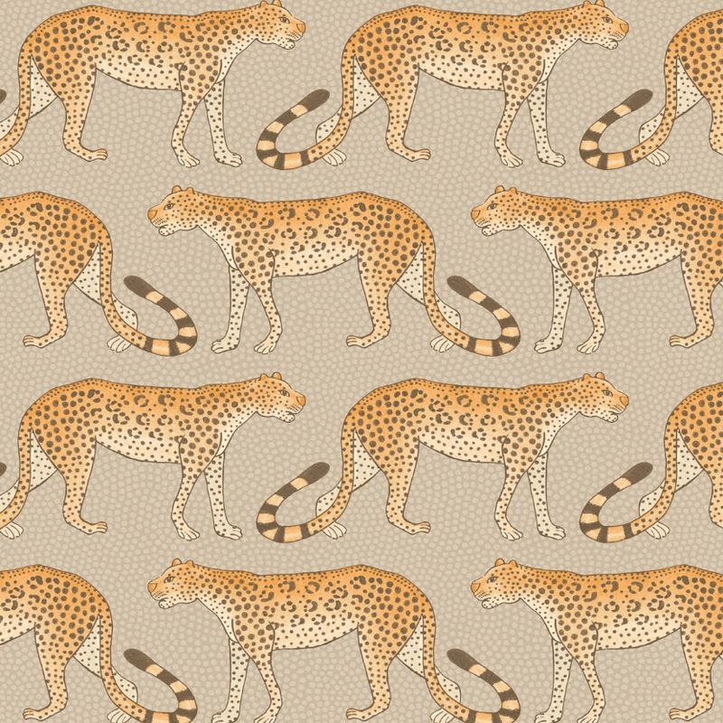 Cole and Son Wallpaper 1 x Roll Leopard Walk Wallpaper 109/2010 Cole and Son Ardmore Leopard Wallpaper 5 Colours