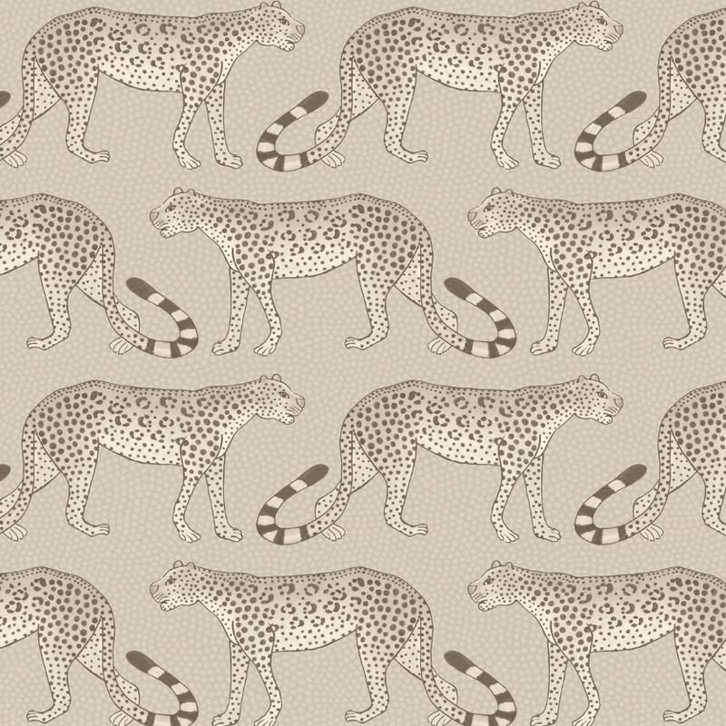 Cole and Son Wallpaper 1 x Roll Leopard Walk Wallpaper 109/2012 Cole and Son Ardmore Leopard Wallpaper 5 Colours