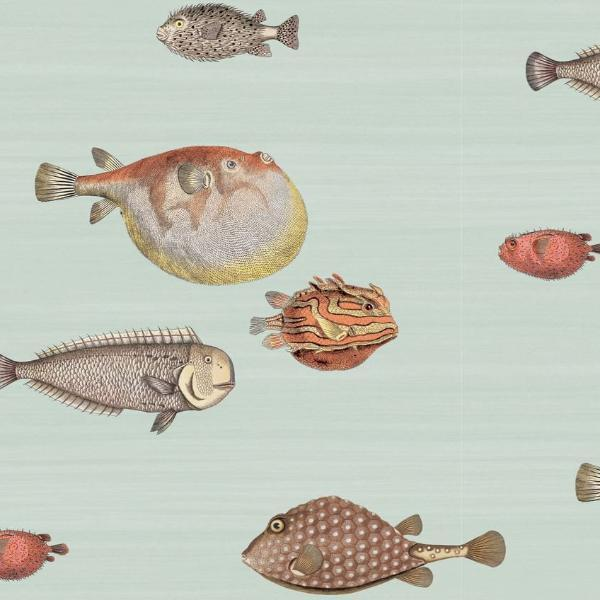 Cole and Son Acquario Wallpaper Roll Cole and Son Fornasetti Acquario Wallpaper 5 Colours