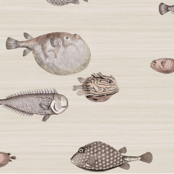 Cole and Son Wallpaper 1 x Taupe Acquario 114/16033 Wallpaper Roll Cole and Son Fornasetti Acquario Wallpaper 5 Colours