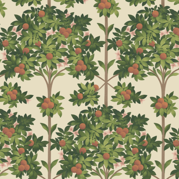 Cole & Son Wallpaper 1 x 117/1001 Seville Orange Blossom Wallpaper Roll Cole and Son Seville Orange Blossom Wallpaper 4 colours