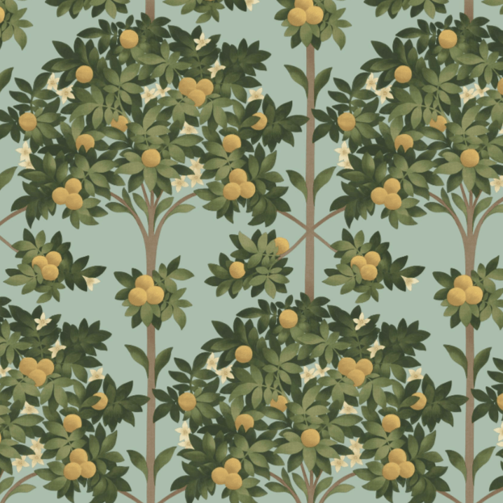 Cole & Son Wallpaper 1 x 117/1002 Seville Orange Blossom Wallpaper Roll Cole and Son Seville Orange Blossom Wallpaper 4 colours