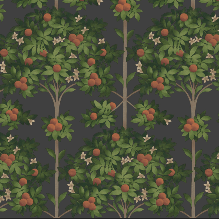 Cole & Son Wallpaper 1 x 117/1003 Seville Orange Blossom Wallpaper Roll Cole and Son Seville Orange Blossom Wallpaper 4 colours